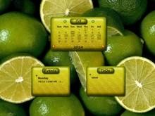 Citrus2 RL