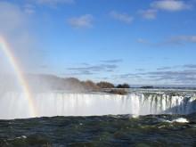 Niagara Rainbow 2011