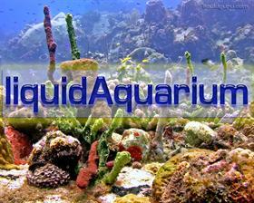 liquidAquarium
