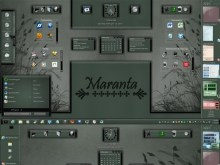 Maranta (Master TM Suite)