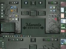 Maranta (Master TM Suite)