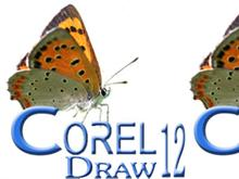 Corel Draw 11 & 12