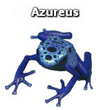 Azureus (realistic)