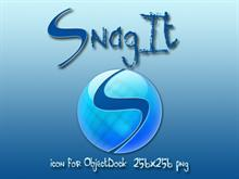 SnagIt for OD