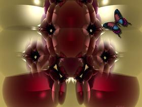 Rosita~N~Butterfly