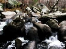 Unami Autumn Day Rocks