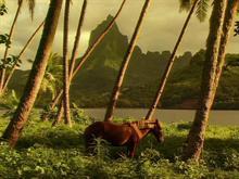 Island Horse
