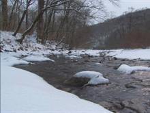 Creek Side In Winter