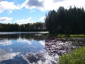 Daytime Lake