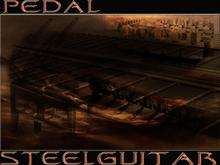 steelin-guitar