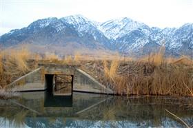 HV pond