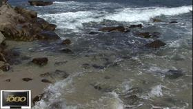 Gentle Surf