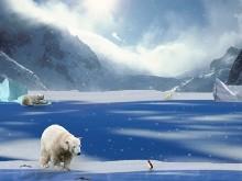 Arctic Life LSV