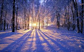 Winter Sunset- #winterdreams