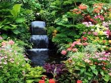 Spring Garden Falls