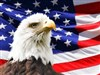 USA Eagle Flag