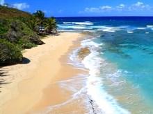 Sea Coast 3