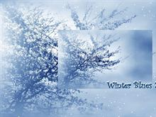 Winter Blues 2pk