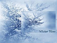 Winter Blues 2pk