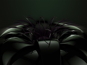 black flower