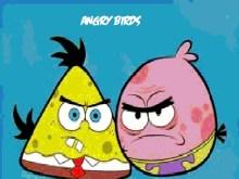 Angry Birds SB Edition