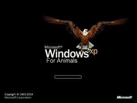 Xp For Animals 2