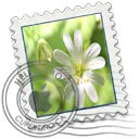 Flower Mail Icon