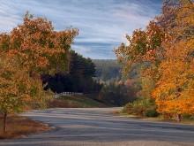 Autumn Roadside LV