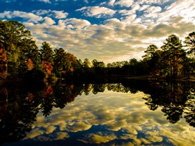 Georgia Fall Reflections