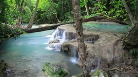 RainForest_Calm_Waterfall