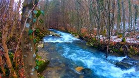 Nice_ Blue_Cold_Forest_River