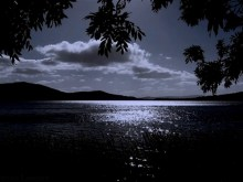 relaxed moonlit night